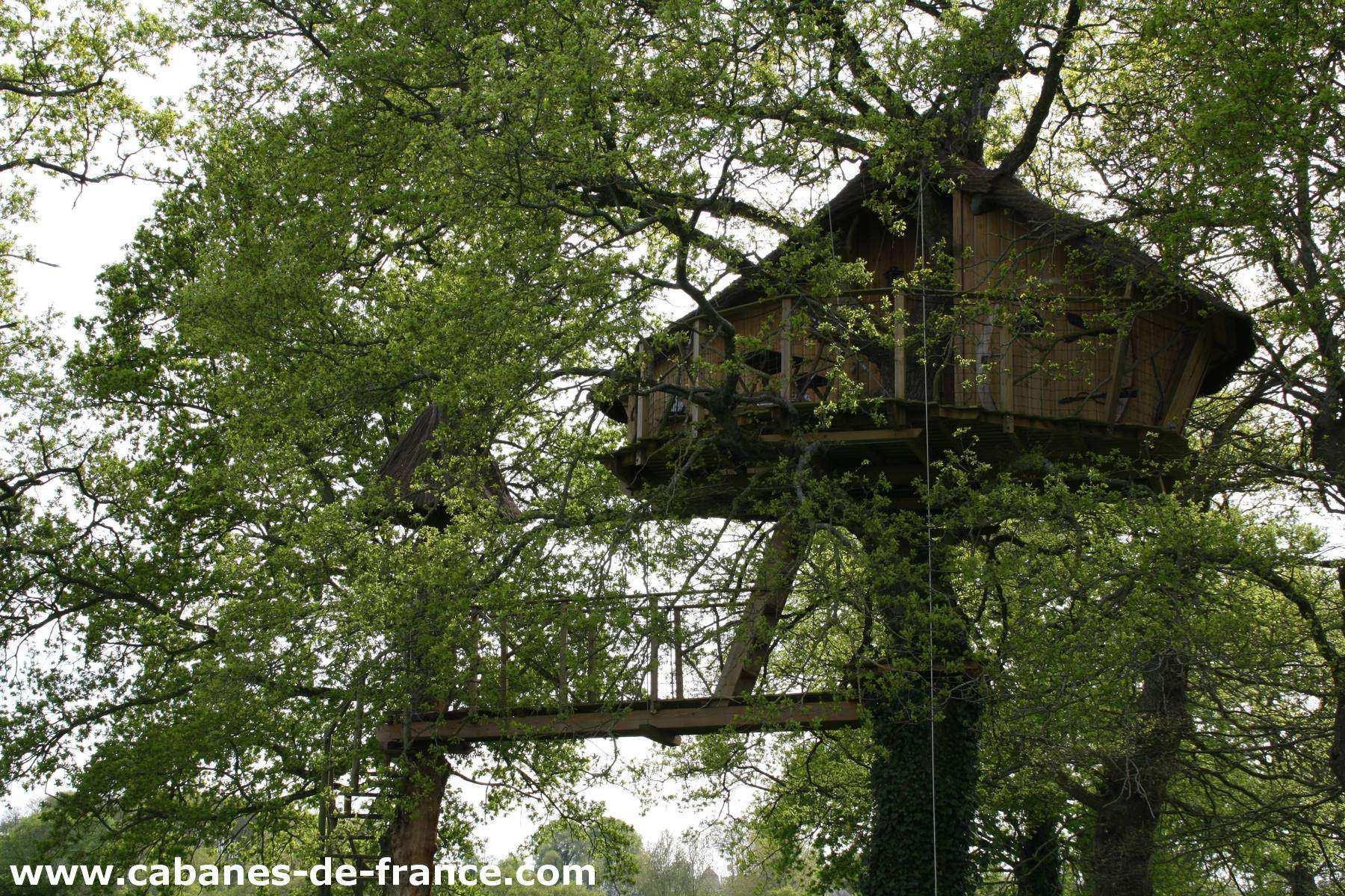 cabane des farfadets manoir de l 39 alleu cabane dans les arbres en bretagne cabanes de france. Black Bedroom Furniture Sets. Home Design Ideas