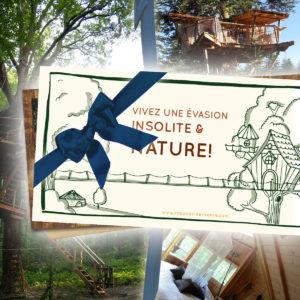Cheque cadeau Decouverte -Box Cabanes dans les arbres