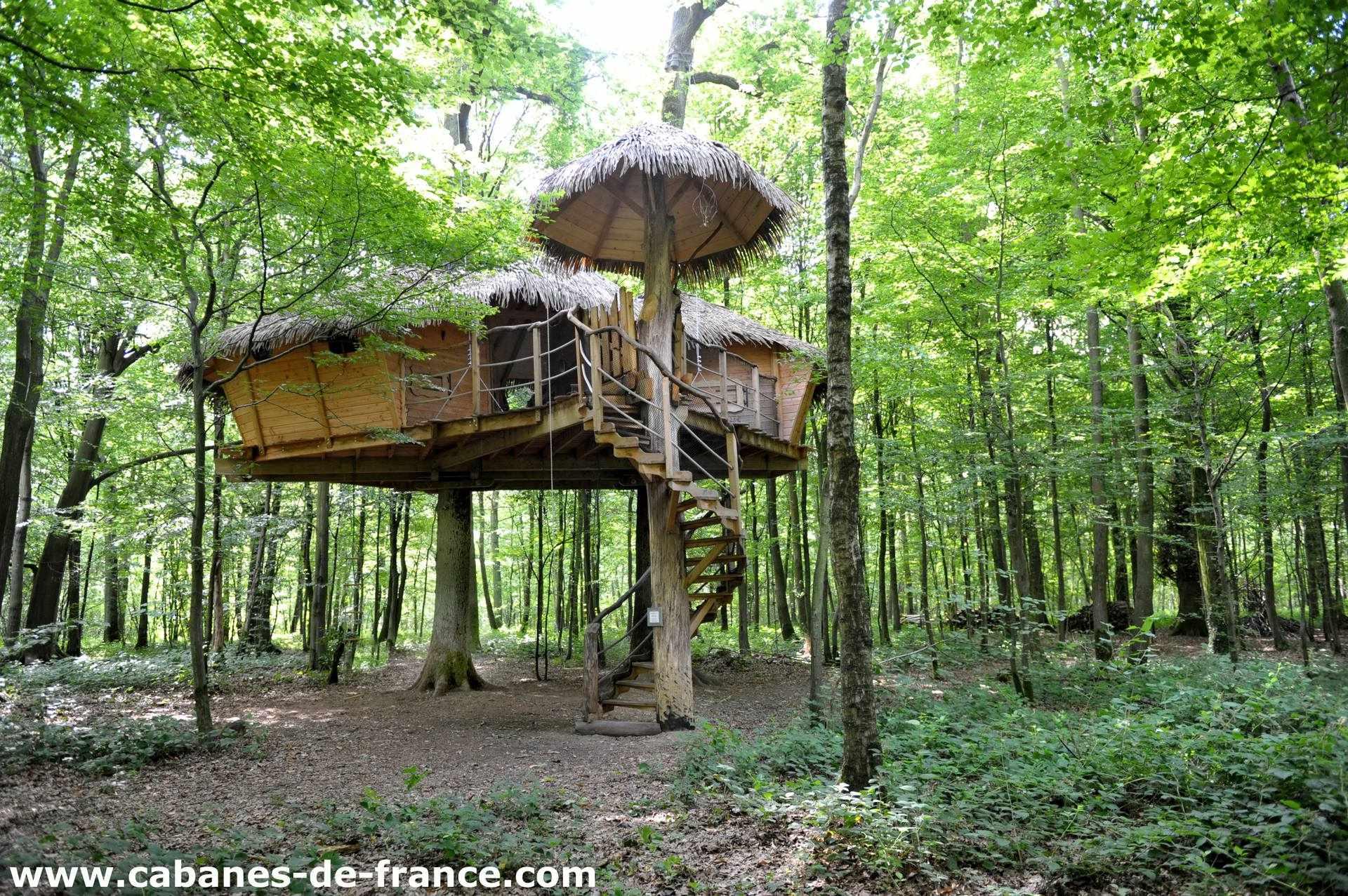 Cabane robin des bois cabane dans les arbres en haute - Chambre insolite normandie ...