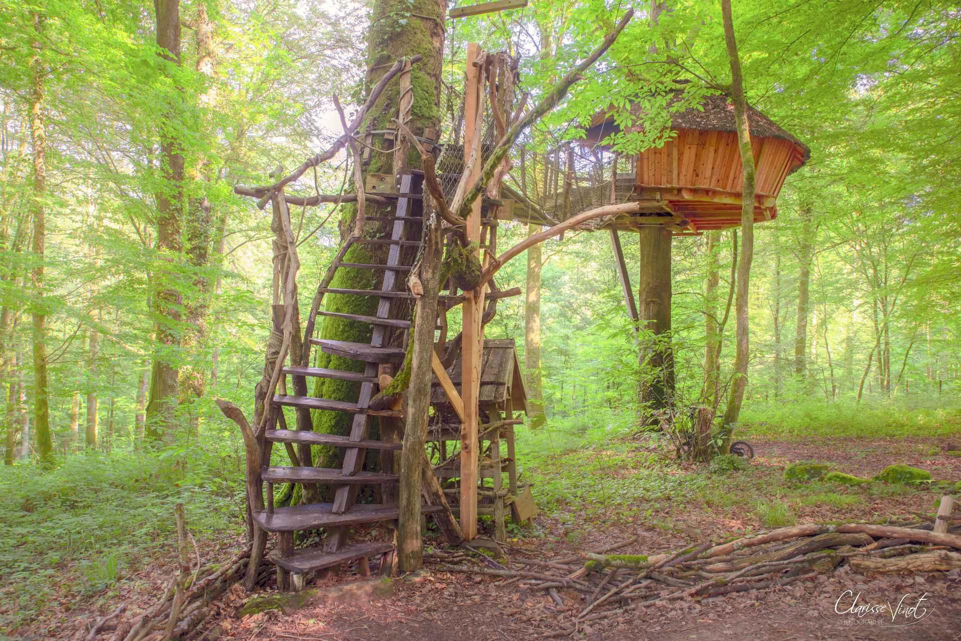 cabane dream l 39 arbre cabane cabane dans les arbres en champagne ardenne cabanes de france. Black Bedroom Furniture Sets. Home Design Ideas