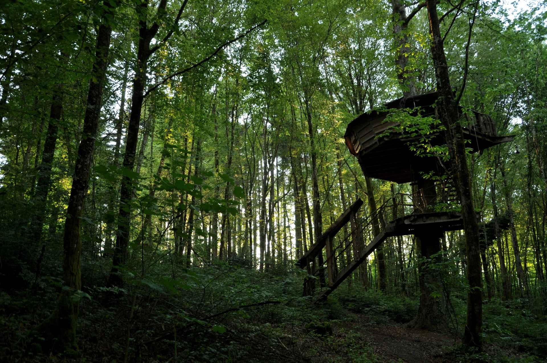 cabane traum l 39 arbre cabane cabane dans les arbres en champagne ardenne cabanes de france. Black Bedroom Furniture Sets. Home Design Ideas