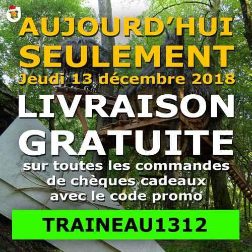Livraison offerte aujourd'hui avec le code promo TRAINEAU1312